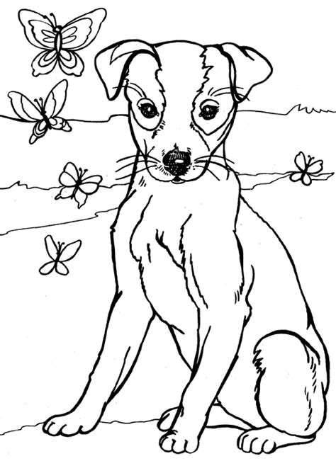 Coloring Of Wire Fox Terriers Dog Breeds Picture Terrier Coloring Pages