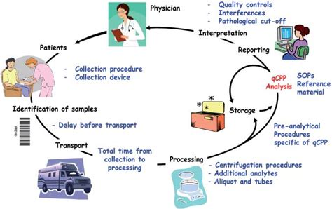 clinical workflow definition quantitative clinical chemistry proteomics qccp using