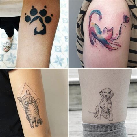 pet tattoo animal tattoos popsugar pets