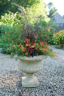 planting containers for late summer into autumn garden