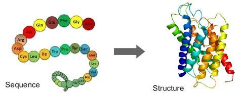 protein 3d structure prediction robotics protein structure prediction