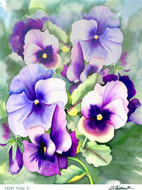 state flower of new jersey violet new jersey state flower hi look online
