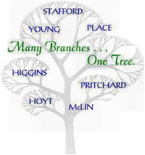 How Many Branches In Mba by Welcome Many Branches One Tree