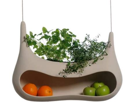 modern fruit holder modern fruit holder and herbs cultivation unit shelterness
