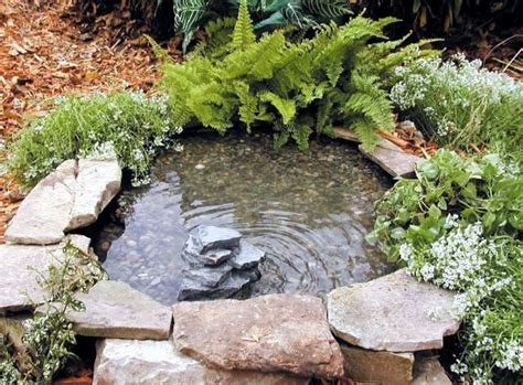 Create a mini garden pond in the mortar bed and replant