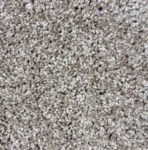 fireplace rugs menards designers image tender touch plush carpet 12 ft wide at menards 174