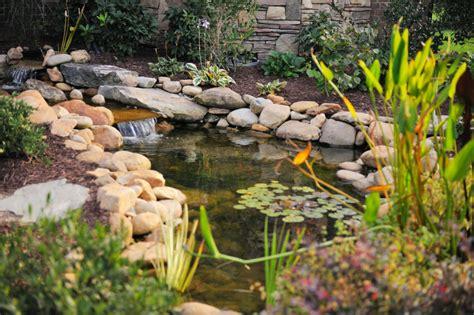 Simple Garden Pond Ideas 37 Backyard Pond Ideas Designs Pictures