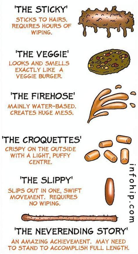 Stool Facts by Poo Facts Factsaboutpoo