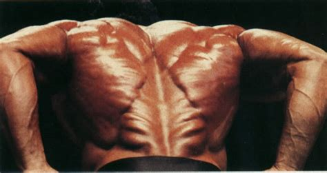 back in the cut the legend of samir bannout part 1 of 4