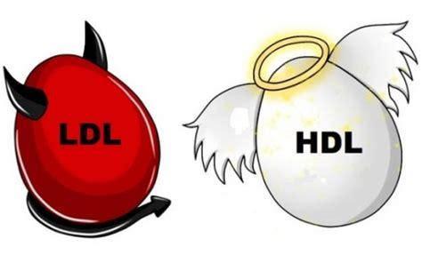 alimenti per combattere il colesterolo alto il colesterolo alto combattere il colesterolo col cibo