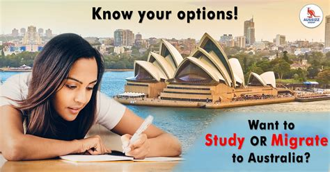 aussizz group immigration agents overseas education consultant local  local business