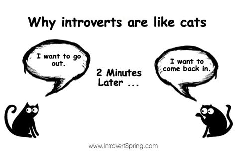 introvert survival tactics how to make friends be more social and be comfortable in any situation when youã re ã d out and just want to go home and tv alone books the problem only an introvert personality will understand