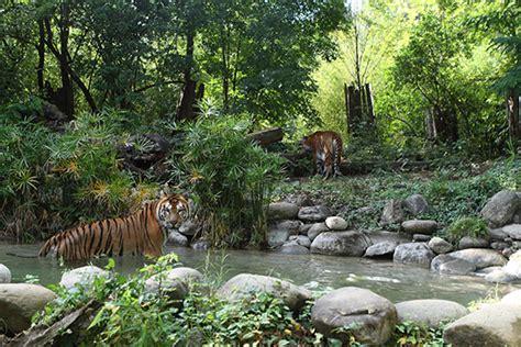 giardino zoologico di pistoia giardino zoologico di pistoia