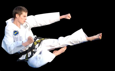 kick the taekwondo kicks search engine at search
