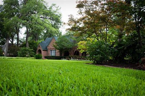 best lawn fertilizer how to select the best lawn fertilizer for your lawn