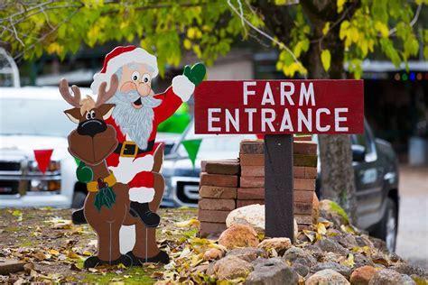 six local christmas tree farms sactown magazine