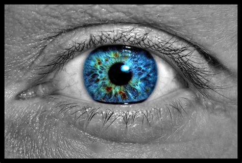 eye on design healing rate of elbows and eyeballs a moment of science