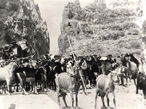 fotos antiguas org im 225 genes y fotograf 237 as antiguas del archipi 233 lago canario