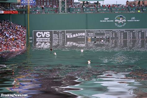 the latest boston news bostoncom boston wet sox pictures