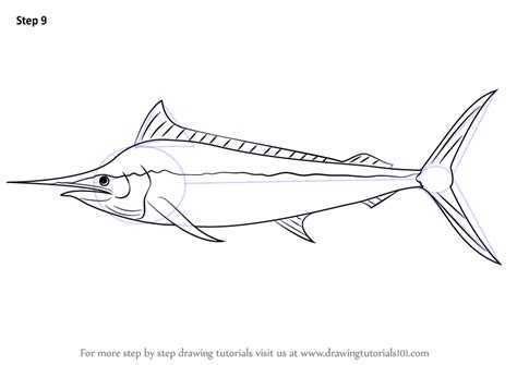 marlin fish coloring pages learn how to draw a black marlin fishes step by step