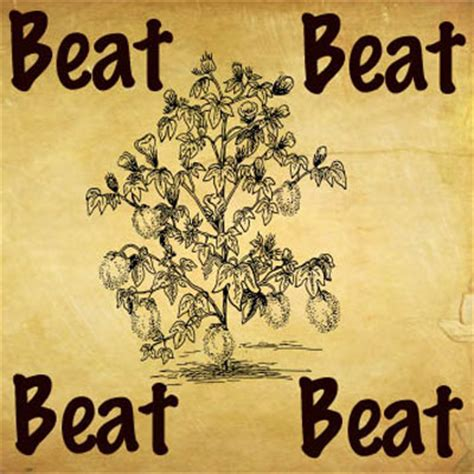 beat around the bush what s the saying answers whats