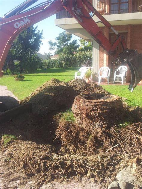 manutenzione giardino condominiale cagliari verde condominiale manutenzione giardino