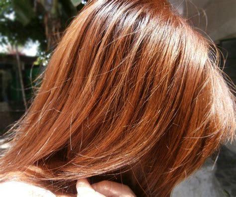 chestnut brown color honey chestnut brown hair colors hair