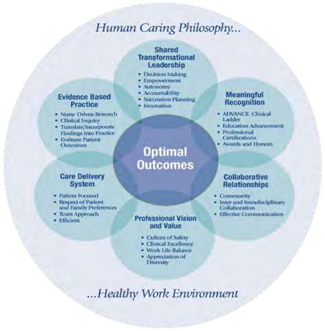 nursing  inova standards accomplishments