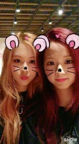 blackpink wikipedia indonesia image chaesoo snow bunny filter png black pink wiki