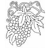 69 Dessins De Coloriage Fruit &224 Imprimer Sur LaGuerchecom  Page 4
