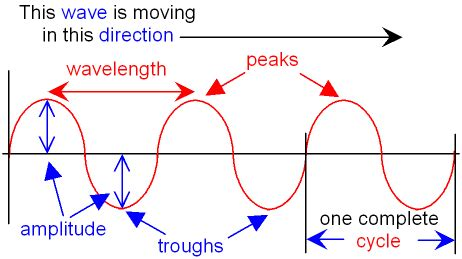 labelled diagram of a transverse wave pictures