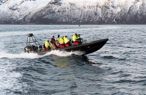 rib boat tour tromso rib boat excursion near troms 248
