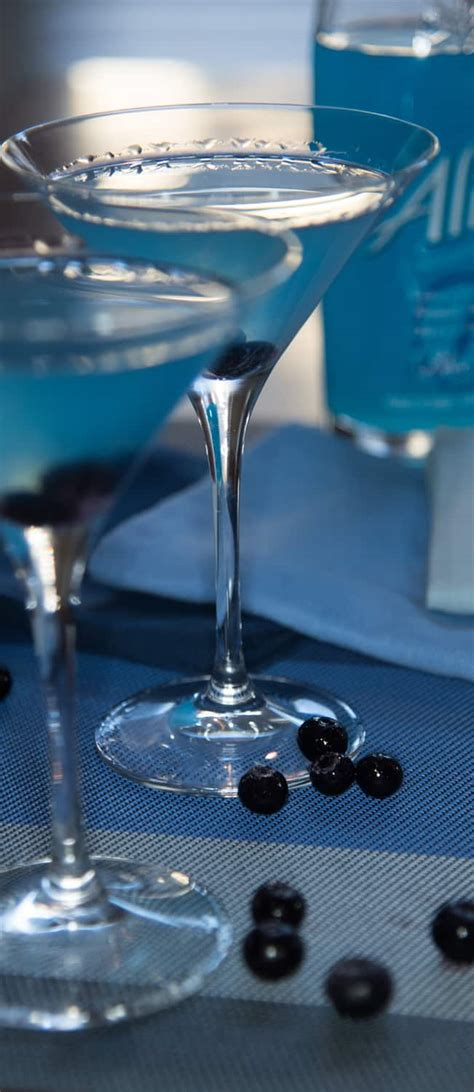 Blueberry Martini Cocktail Recipes Earth Gear
