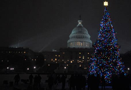 national christmas tree lighting ticket lottery opens at