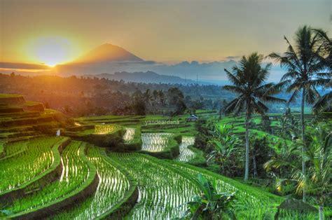 anime indonesia baki bali photography tours