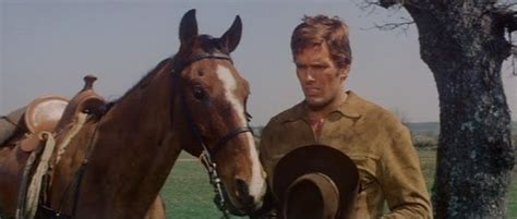 film cowboy giuliano gemma 123 best images about giuliano gemma on pinterest