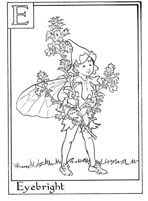 1000 Images About Alphabet Fairy Coloring Pages On Flower Fairies Coloring Pages