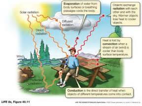 convection conduction radiation cartoon diagram