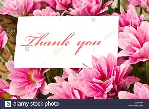 Pdf Thank You Note For Flowers by Thank You Note Flowers Nobody Stock Photos Thank You