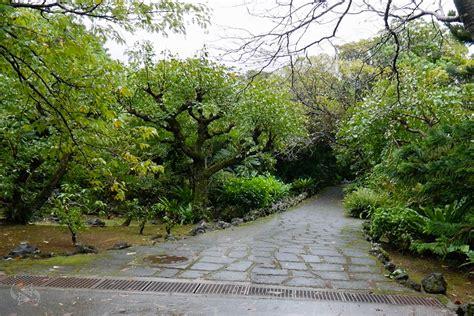 Tropical Zone Botanic Garden Of Bristol Travel Guide To Tokyo S Semi Tropical Hachijo Island Hachijojima