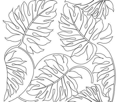 printable rainforest flowers rainforest leaves coloring pages www pixshark com