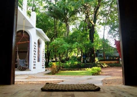 That Hostel Goa India Asia jungle by thehostelcrowd in vagator chapora india