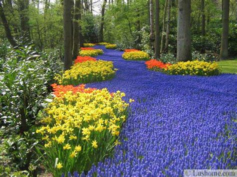 spring garden ideas colorful spring flowers and yard landscaping ideas
