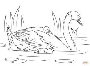 swan coloring pages mute swan with coloring page free printable