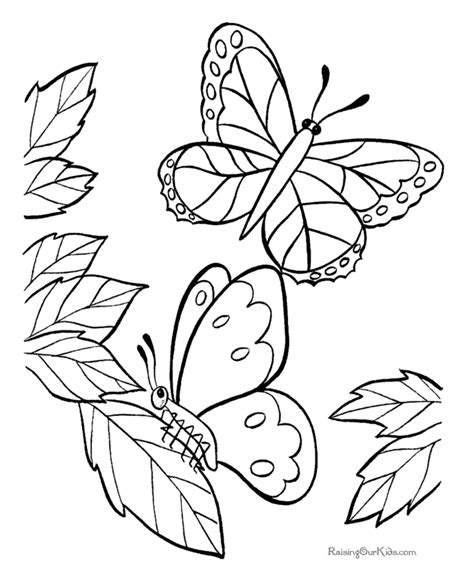 butterfly coloring page education com coloring pages print perfect coloring pages summer