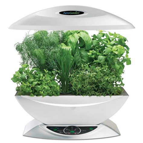 hydroponic indoor herb garden hydroponics and aeroponics in your kitchen the future is now
