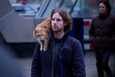 404378 un chat pour la vie test dvd un chat pour la vie critique film