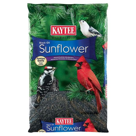 higgins sunshine safflower gold bird food for small