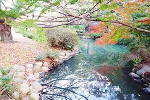 shinjuku gyoen national garden affordorable