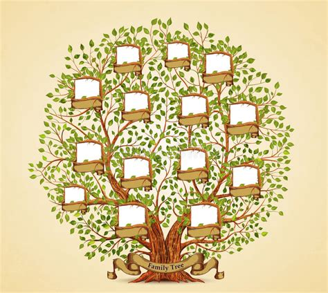 Family Tree Template Vintage Vector Stock Vector Illustration Of Genealogy Icon 95570586 Vintage Genealogical Family Tree Sketch Vector Illustration Stock Vector